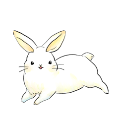 light-colored rabbit