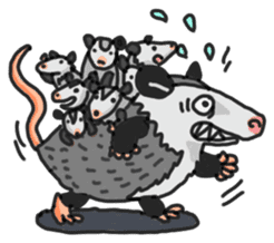 Death Manet skillful Opossum. sticker #10053889
