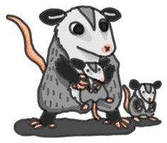 Death Manet skillful Opossum. sticker #10053909