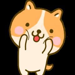 dog kawaii 4