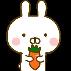 Rabbit Usahina Yokutukau 2
