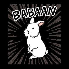 English Bunny 2