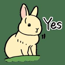 English Bunny 2 sticker #10103552
