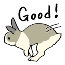 English Bunny 2 sticker #10103556