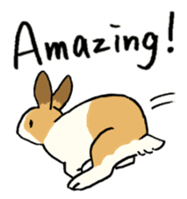 English Bunny 2 sticker #10103558