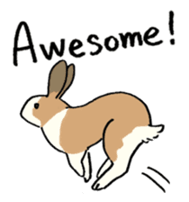English Bunny 2 sticker #10103559