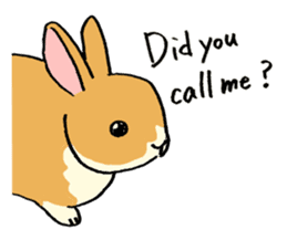 English Bunny 2 sticker #10103569