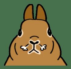 English Bunny 2 sticker #10103578