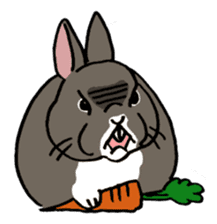 English Bunny 2 sticker #10103579