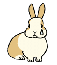 English Bunny 2 sticker #10103580
