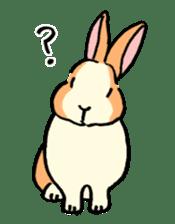 English Bunny 2 sticker #10103582