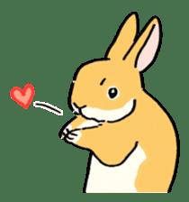 English Bunny 2 sticker #10103590