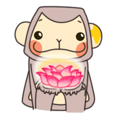 gibbon monkey Aidan