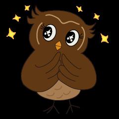 Momo Owl