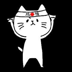 Nagasaki Cat 2