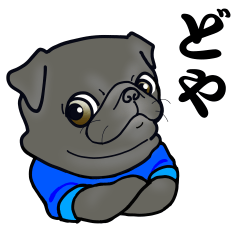 3 Snub-nosed Pups II