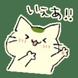 maccha-neko sticker #10218389