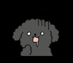 Black Toy Poodle By Kaeko Sticker 10291913
