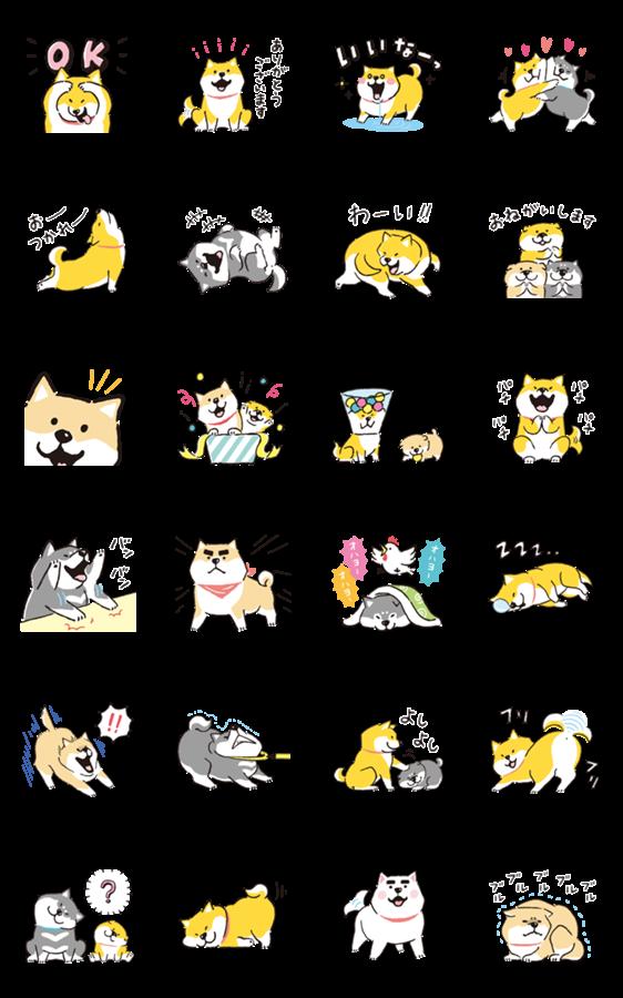 สติ๊กเกอร์ไลน์ Shibanban Animated Stickers