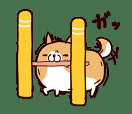 lazy shiba vol.5 sticker #10309690