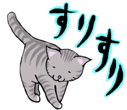 Your favorite cat sticker #10332888