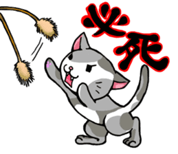 Your favorite cat sticker #10332895