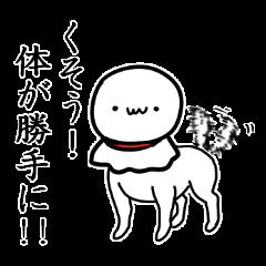 I am Teru.