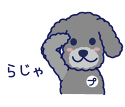 Schna & Toypoo 6th sticker #10367014