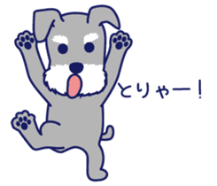 Schna & Toypoo 6th sticker #10367016