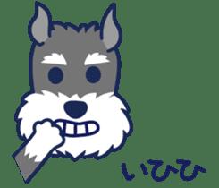 Schna & Toypoo 6th sticker #10367017