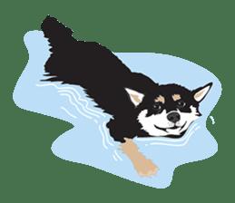 Black Shiba Inu Akira sticker #10411482