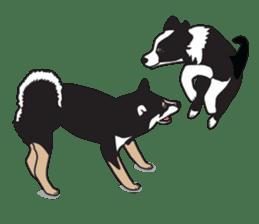 Black Shiba Inu Akira sticker #10411496