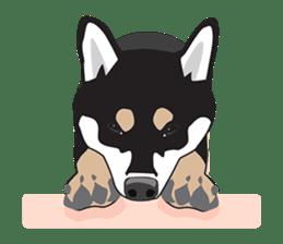 Black Shiba Inu Akira sticker #10411498