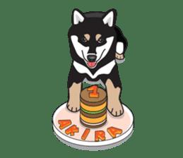 Black Shiba Inu Akira sticker #10411504