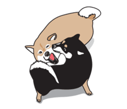 Black Shiba Inu Akira sticker #10411510