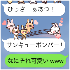 Team Rabbit*