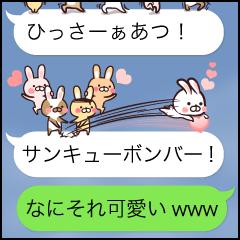Team Rabbit*