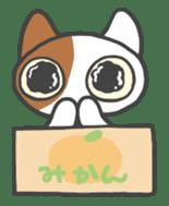 ORANGE BOX CAT sticker #10419090