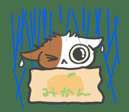 ORANGE BOX CAT sticker #10419094