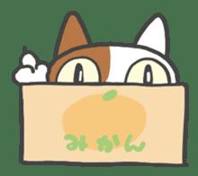 ORANGE BOX CAT sticker #10419105