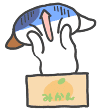 ORANGE BOX CAT sticker #10419107