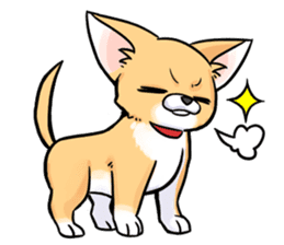 Together with Chihuahua!(English ver.) sticker #10465028