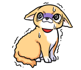 Together with Chihuahua!(English ver.) sticker #10465032