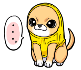 Together with Chihuahua!(English ver.) sticker #10465038