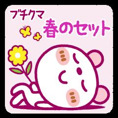 ブチクマ【春のセット】