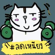 สติ๊กเกอร์ไลน์ Cutie Cat (Big sticker)