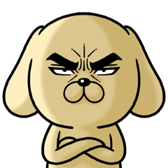 Attractive eye's dog