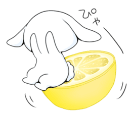 Rabbit with sweets and fruits sticker #10521017