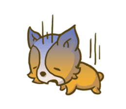 Melon the Corgi Puppy sticker #10521648