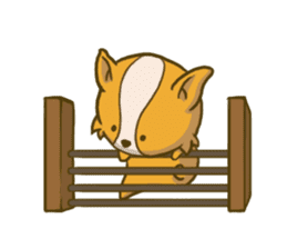 Melon the Corgi Puppy sticker #10521673